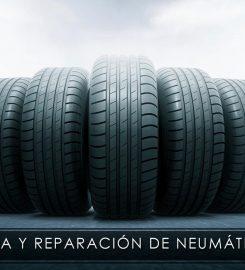 Neumáticos Martín Kinito