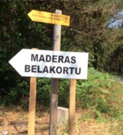Maderas Belakortu