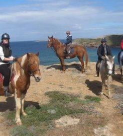 Menorca A Cavall