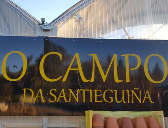 O Campo Da Santieguiña